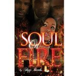 Soul on Fire By Skyy Banks Book Review