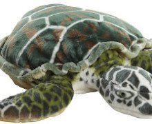 Mother Sea Turtles Month Giveaway Ends 6/12