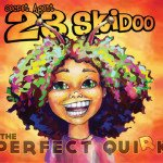 Secret Agent 23 Skidoo The Perfect Quirk