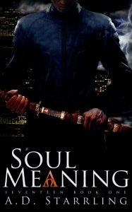 Soul-Meaning-2500x1563-Amazon-Smashwords-Kobo-Apple
