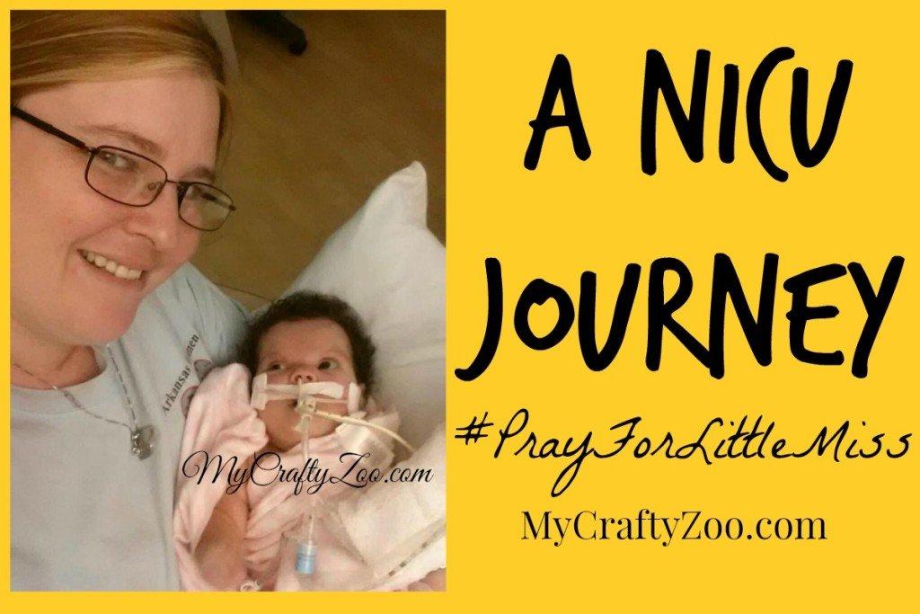Untitled-1024x683 A NICU Journey #PrayForLittleMiss