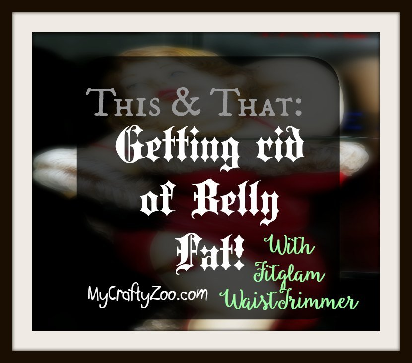 This & That Getting Rid of Belly Fat with Fitglam WaistTrimmer