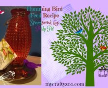 Hummingbird Food Recipe Sponsored by Perky Pet Feeders