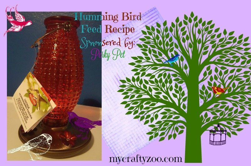 Hummingbird Feeder & Hummingbird Food Recipe