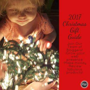 2017 Gift Guide & Blogger Opp