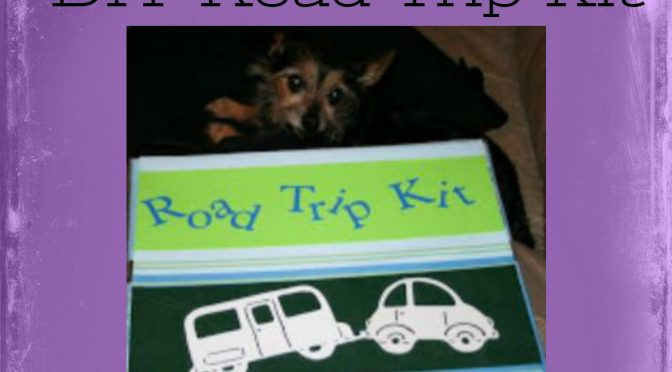 You can't Road Trip without this!  DIY Road Trip Kit