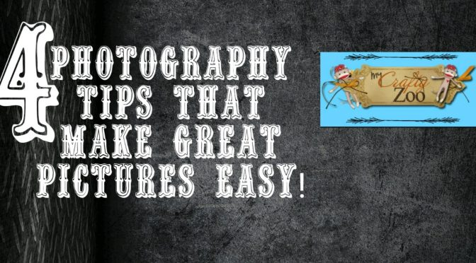 Photography Tips to Help You Take Shots Like a Pro Every Time!