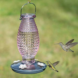 Cranberry Hobnail Vintage Hummingbird Feeder