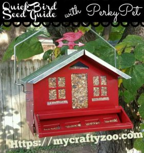 Quick and Easy Bird Seed Guide