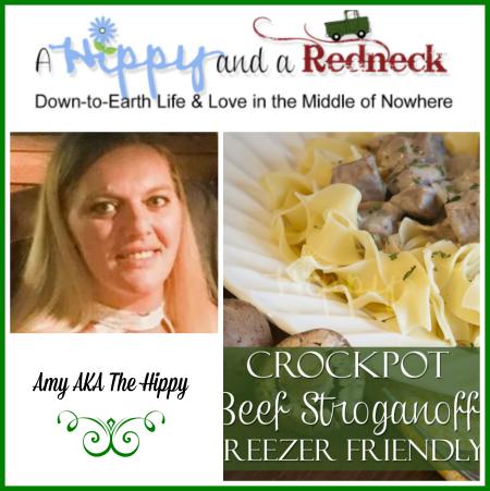 Beef Stroganoff Wonderful Wednesday Feb 13 Edition