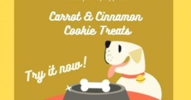 Easy Dog Treats Recipe: Carrot and Cinnamon Cookies