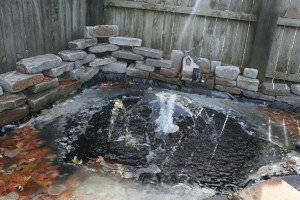 Our Frozen Leaf Filled Koi Pond