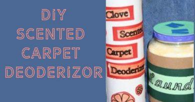 Carpet Deodorizer Easy DIY Recipe