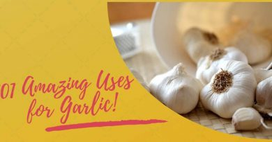 Garlic: 101 Amazing Uses For All Parts of Life