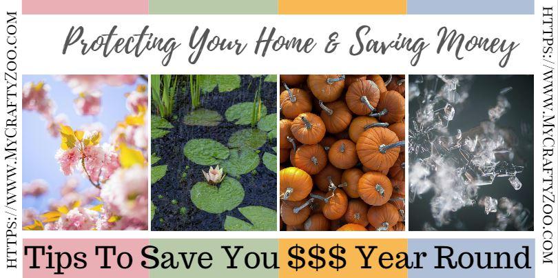 Protecting Your Home & Saving Money