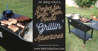 IG BBQ Grill Perfect for Your Year Round Grillin' Adventures