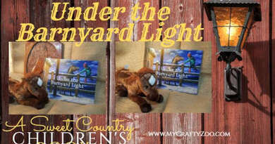 Under the Barnyard Light: Sweet Country Book